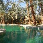 siwa garden hotel