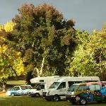 Camp Kiwi in Otorohanga NZ