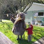 Photo de Camp Kiwi Holiday Park