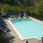 The pool at Villa Nuba