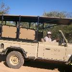 The Safari Vehicles