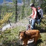 Lyle & Rufus working on the trails
