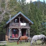 Horses outside our cabins