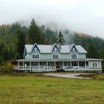Amber Bear Inn