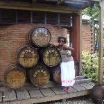 Photo de Coconut Palms Resort