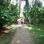 path leading to OC from the Cauvery river walk