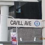 Down at Cavill Avenue