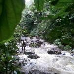 Hiking through the rain forest to the amazing waterfall