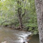 The creek on the property