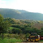View from Brigolante