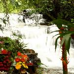 Photo de Cascadas Farallas Waterfall Villas