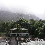 Tropenschauer