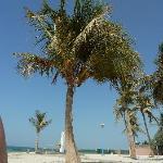 Jumeriah beach park