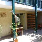 le patio devant la chambre n°5