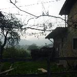 Photo of Azienda Agrituristica Tizzano