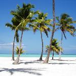 Playa en Punta Cana (28605764)