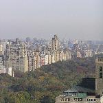 view of central park from 3905