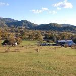 Graves Mountain Lodge Foto