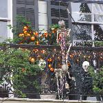 Hallowe'en decorations at Dauphine House