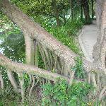 Tanghu Park-7