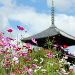 Hokiji Temple