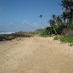 Strand bij Weligama