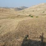 serene surrounding rolling hills