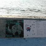 宮城海岸 壁の絵 可愛い