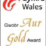 Visit Wales Gold Award 2010-11