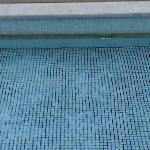 more swimming pool - this brown bit is dirt :-)