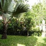 Jardin privado del bungalow
