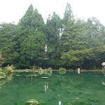 Alishan Country Park