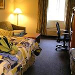 Cute bedspread, spacious room.