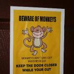 Sign in our room: BEWARE OF MONKEYS!!