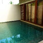 your own private dip pool