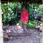 Umu - Outdoor Samoan Kitchen