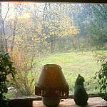 la grande finestra sul bosco