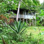 Bolita Lodge