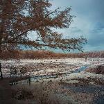 Water Lily Deck Over looking Goose Prairie