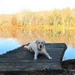 Tula at the Lake
