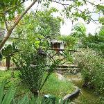 lodge garden