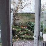 Little garden 2