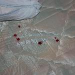 Bloody mattress stains