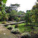 Garten der Bungalowanlage