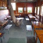 Interior comedor 1
