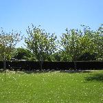 The spacious backyard grounds w/badminton net