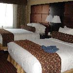 chambre de La Quinta Inn & Suites Dublin - Pleasanton