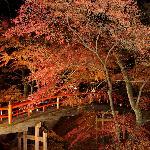 Foto de Ikaho Onsen