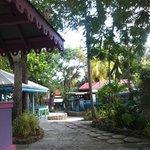 Our Tropical Garden Location
