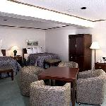 Executive Suite w renovated washroom, kitchenette, 42' flatscreen, 2 beds and sofabed double the